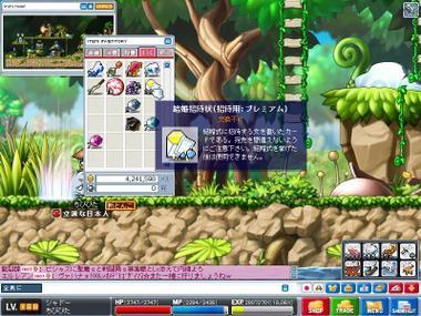 Maple0003_2