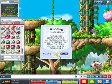Maple0000jpg