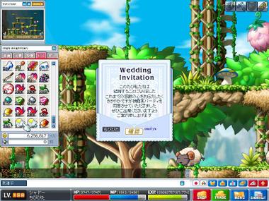 Maple0001jpg
