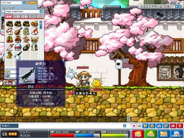 Maple0004_8