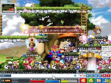 Maple0012_1