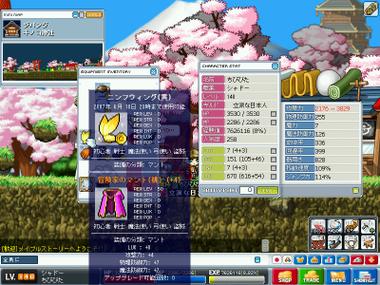 Maplestory200704080733
